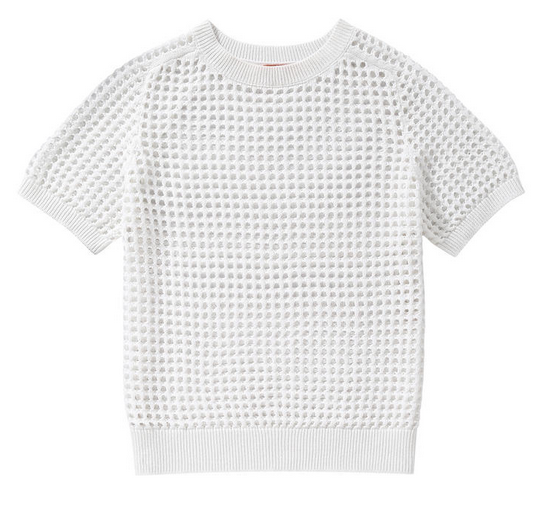 Mesh Short Sleeve Sweater